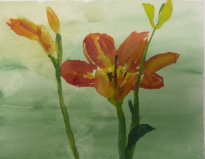 Becca's daylily