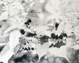 Gottlieb drawing